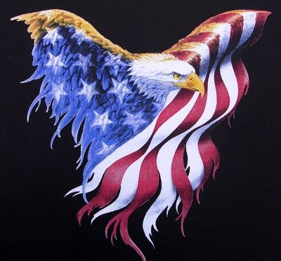 featured-american-flag-bald-eagle-scrapetv-com